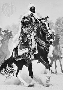 African Muslim Warrior