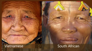 south-african-and-chinese-compare-features